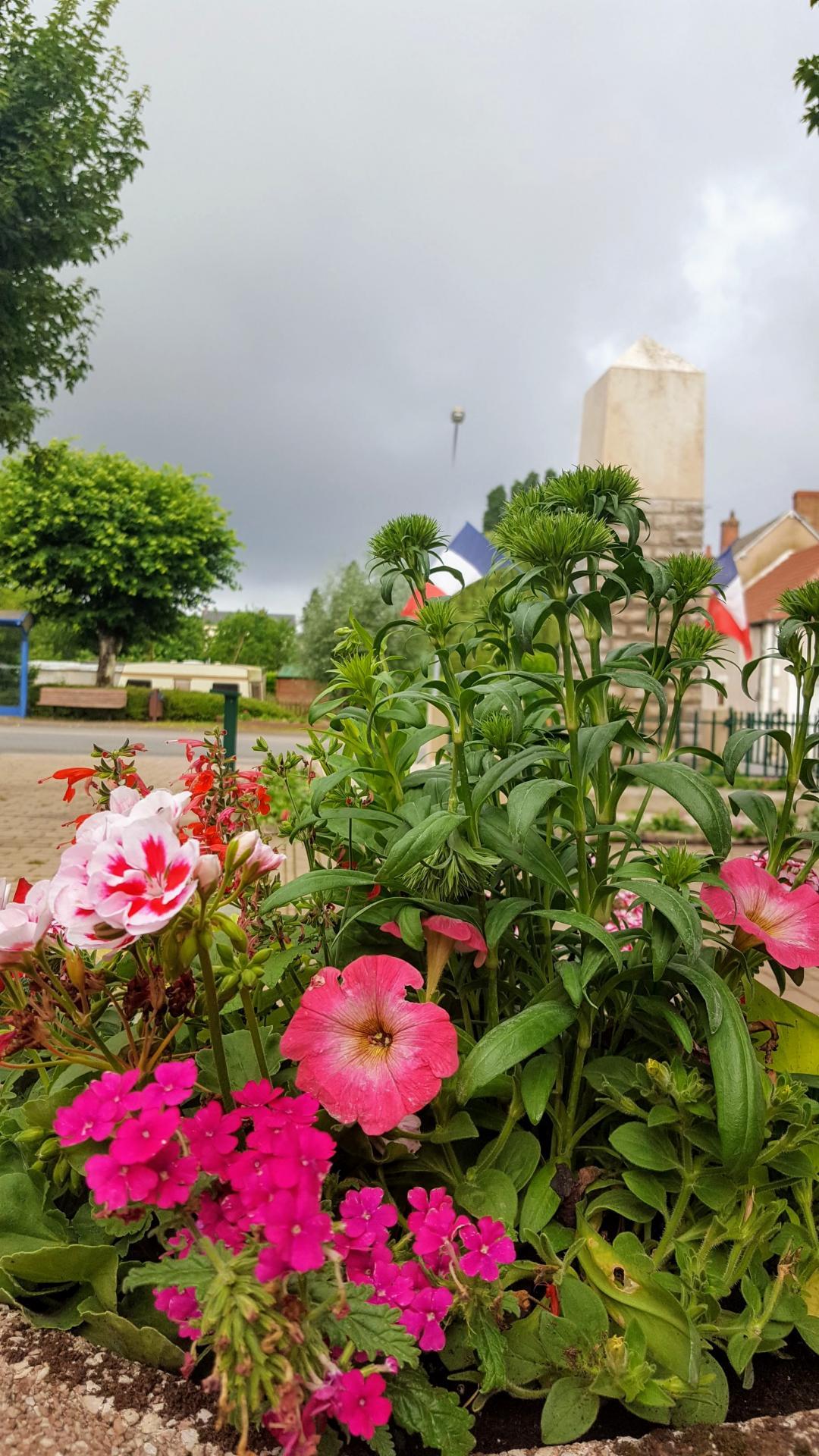 fleurissement 3